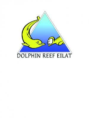 ריף הדולפינים אילת